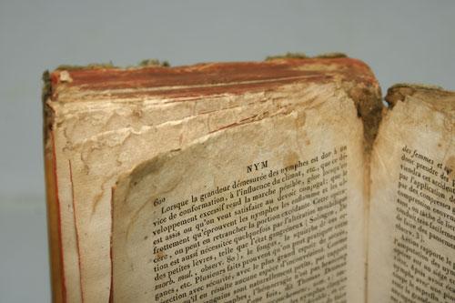 Tipps Zur Pflege Und Aufbewahrung Von Büchern