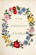 The American Flora