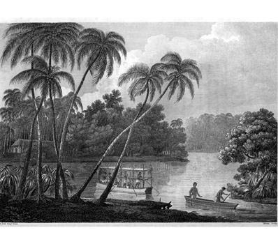 Voyages and Travels to India, Ceylon, the Red Sea, Abyssinia, and Egypt in the years 1802-1806 von Viscount George Annesley Valentia